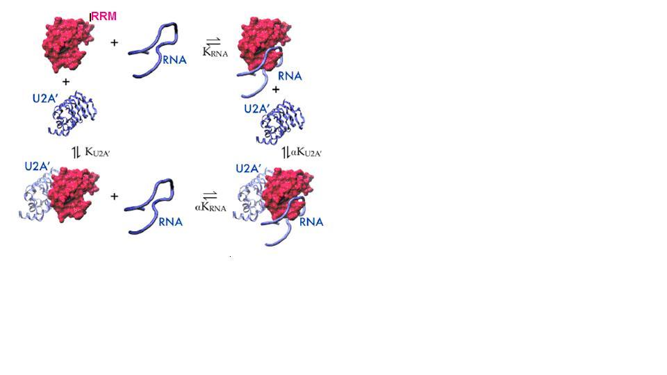 TOC Biochemistry